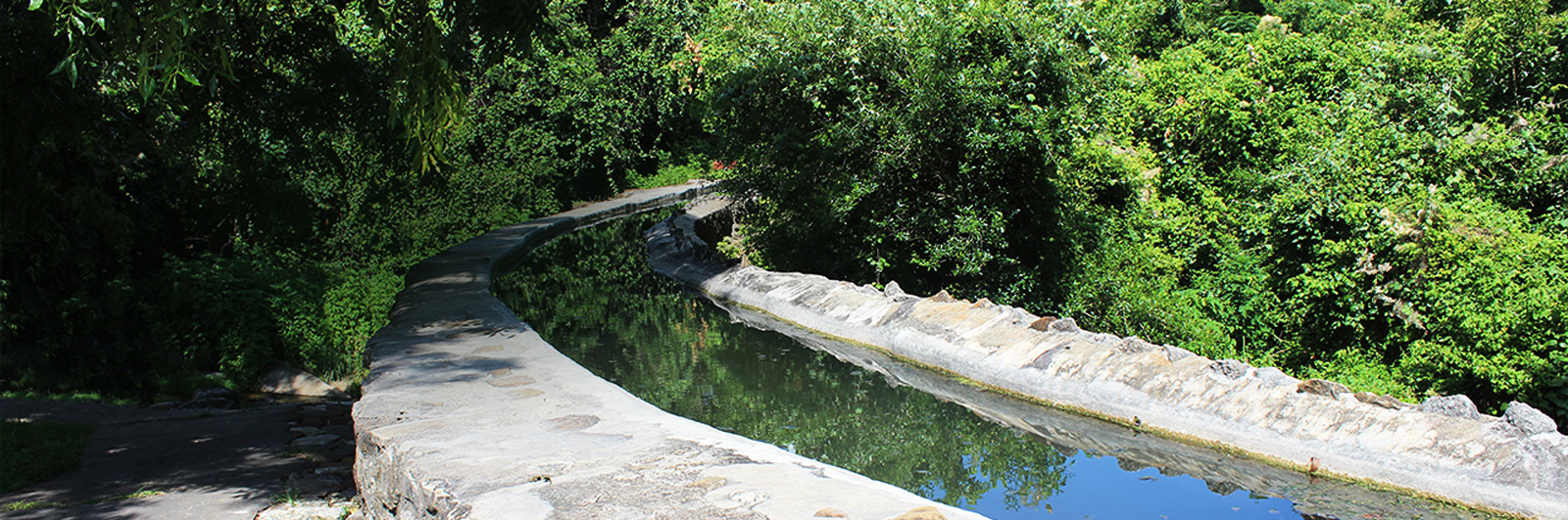 The Acequia