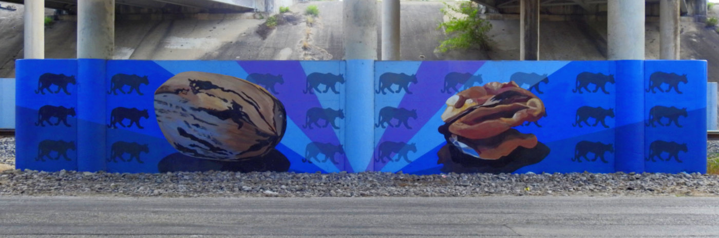 Photo of mural on Villamain road under Loop 410